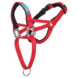 Big Dog Styles Head Collar With Chain 1