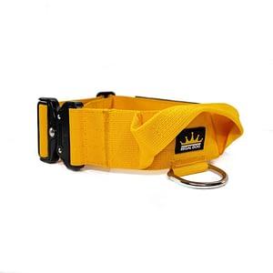 Regal Dog Tactical Dog Collar Burnt Orange