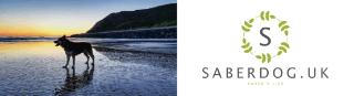 Saber's Life A Dog's Blog